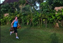 Coconuts at Work - Sharing Bali Fitness / Fitness. Taking it outside. Tossing in coconuts. Simple. It works.