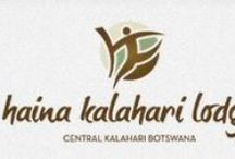 Haina Kalahari Lodge / Bordering the Central Kalahari Game Reserve, Haina is an affordable lodge with a host of activities. Enjoy a unique walking with the Bushmen experience, quad bike your way through the bush and spot the elusive Black-maned lions.