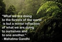 Earthspiration / Inspiring words or images that remind us to take action against climate change