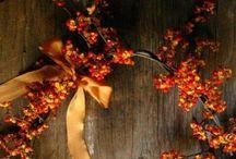 AUTUMN | FALL / #autumn #fall scenery of colours