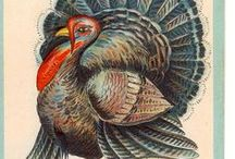 Thanksgiving / Its November! Some ideas and ways to have a greener Thanksgiving
