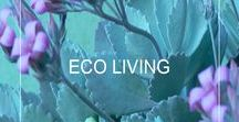 Eco Style Living / Create your eco conscious life and home, live beautifully in mindful style. Find easy green tips, great organic products and eco living ideas. Simple ways to create positive change, health and happiness for your style, your life and body, mind + spirit.