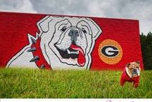 GA Bulldogs!!! / by Ilona Amspacher