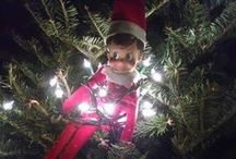 Elf on the Shelf / What's the elf doing at your house this holiday season?