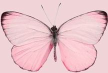 Pink / by Catherine Connors