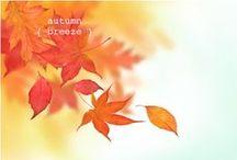 Couleurs chaudes / Palette de jaunes, oranges et roses...