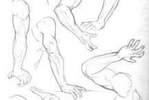 Sketches & Scribbles