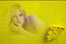 yellow-sarı.