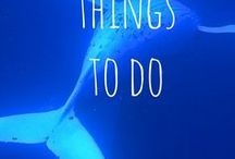 Things to Do | Travel 2 Next