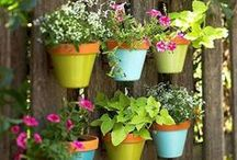 Garden Inspiration / Great #DIY ideas and inspiration for your garden, outside space or even your home.