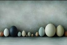 EGGS, BIRDS AND FEATHERS
