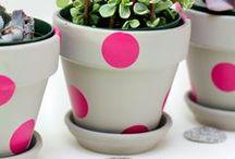 Flowerpots, flower stands