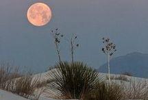 ⋰∮⋰ Moon Magic / by ☼♁☾∆ Enchanted ☼♁☾∆
