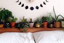 Homespiration / by Emily Lucas