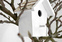 Birdhouses, -cages