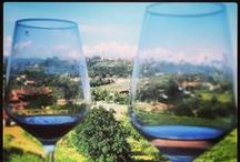 Tuscany Drink&Food and more.. / Tuscany Drink & Food  - In order of importance!