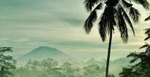 Bali Reisetipps und Inspiration ♡ / Sattgrüne Reisfelder, aktive Vulkane, freche Affen, tausende von Tempeln, Surfervibes, Yoga und Spiritualität, herzliche Menschen und eine wunderbare Kultur zeichnen die Insel der Götter aus. Hier findest du jede Menge Reisetipps und Inspiration für Bali.