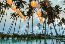 Travel Sri Lanka ♡ / #srilanka #sri #lanka #asia #travel #reise #nature