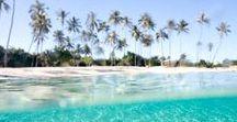 Travel Maldives ♡ / #malediven #maledives #paradise #beach #travel #reisen #inspiration