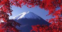 Travel Japan ♡ / #japan #travel