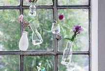 Fenster - Window / Dekorative Fenster[Bilder] - decorative windows