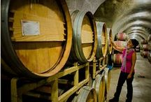 Woodinville Wine Tours / Enjoy Woodinville Wine Country from the comfort of a professional tour vehicle and guide.