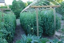 Gardening/Orchard
