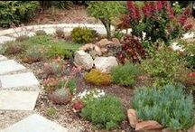 Sustainable Landscaping & Living / Eco-scapes, garden ideas, permaculture, native landscapes, green living.   Sustainability in landscape has many different meanings, but in general,  sustainability means the creation of outdoor spaces that utilize the three R's: Reduce, Reuse, and Recycle. Generally low-maintenance, a sustainable landscape creates a balanced relationship between the natural and man-made environment.