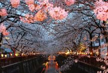 I Japan!!!❤ / I love so much Japan.