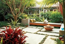 LANDSCAPING: tropical