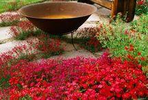 in the garden / by Leslie Ann W.
