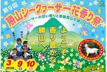 Okinawa Festivals & Events / What's happening locally