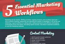 Internet Marketing / Online & internet marketing tips.