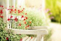 Kert (Garden) / Kellemes pihenőkertek, inspiráló vetemények (Pleasant gardens, inspirational vegetable garden)
