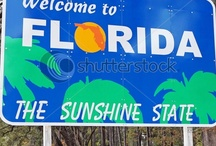 Florida / by Michelle MacCarthy