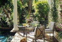 Garden, pool & patio