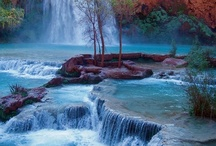 Nature / The wonders of nature, pictures that capture the true essence of great outdoors goes here.