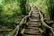 ARCHITECTURE Stairways / by Ronnie Turner