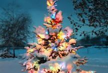 CHRISTMAS...Trees/Wreaths/Garlands 'n Swags / by Ronnie Turner