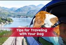 Travel Tips / Simple ideas to help you plan your travel!