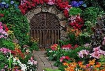Beautiful Gardens&Flowers