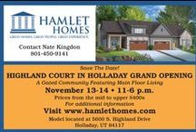 About Us / Take a visual tour of Hamlet Homes!