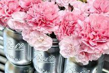 Carnation Inspiration