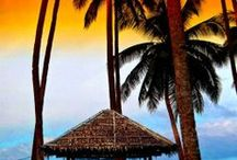 Hawaii / A tropical paradise! Exotic flora and fauna, gushing waterfalls, active volcanoes and miles of unspoilt beaches simply enchant. A popular destination for honeymooners, it's also a great family destination, with plenty to keep children entertained.