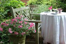 tuin:Buite kuier (patio)