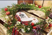 Natale nella rete / Tante idee regalo, floreali e crative, per festeggiare la festività del Natale realizzate in rete metallica da pollaio