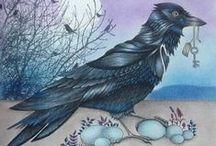 Floresta Encantada - Pássaro / Enchanted Forest - Bird