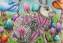 Floresta Encantada - Coelho / Enchanted Forest - Rabbit