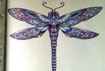 Floresta Encantada - Libelula / Enchanted Forest - Dragonfly