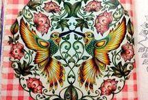 Jardim Secreto - Beija-Flor / Secret Garden - Birds